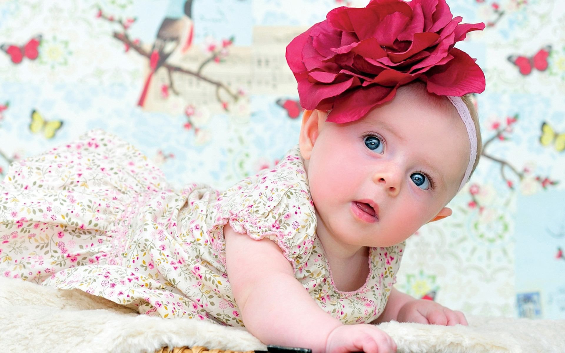 Cute And Lovely Baby Pictures Free Download Allfreshwallpapers
