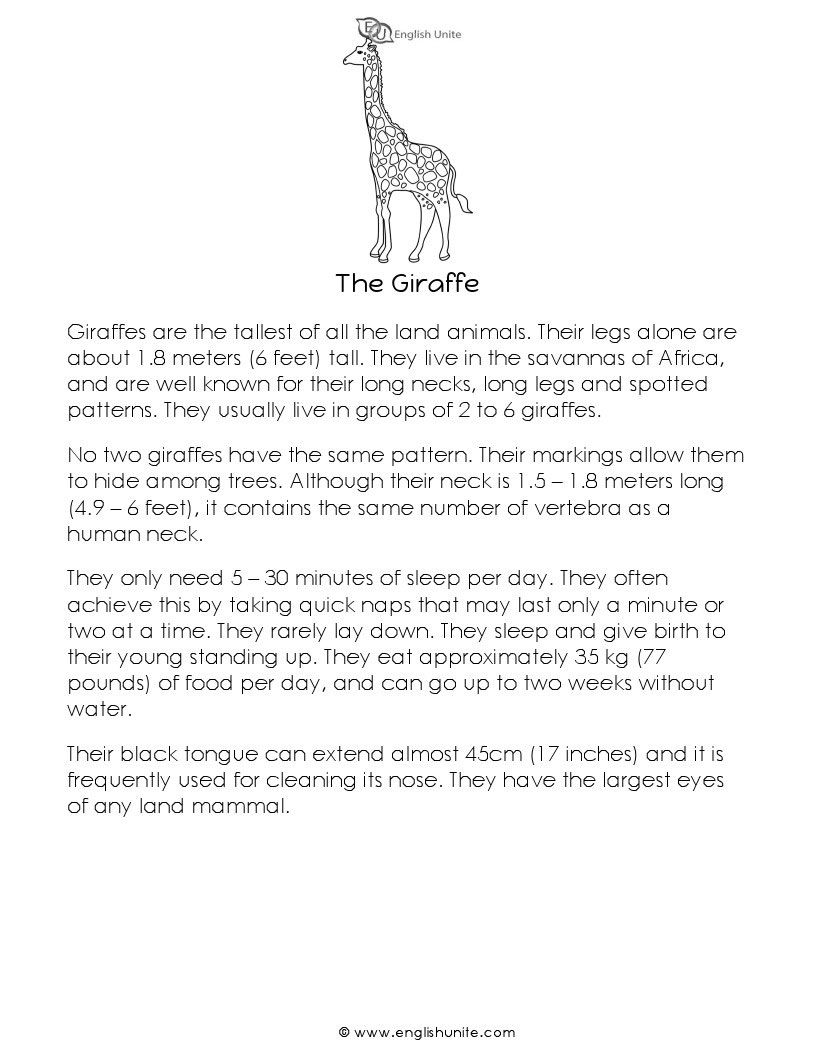 Short Story The Giraffe English Unite Short Stories Reading Passages Vocabulary Words [ 1056 x 816 Pixel ]