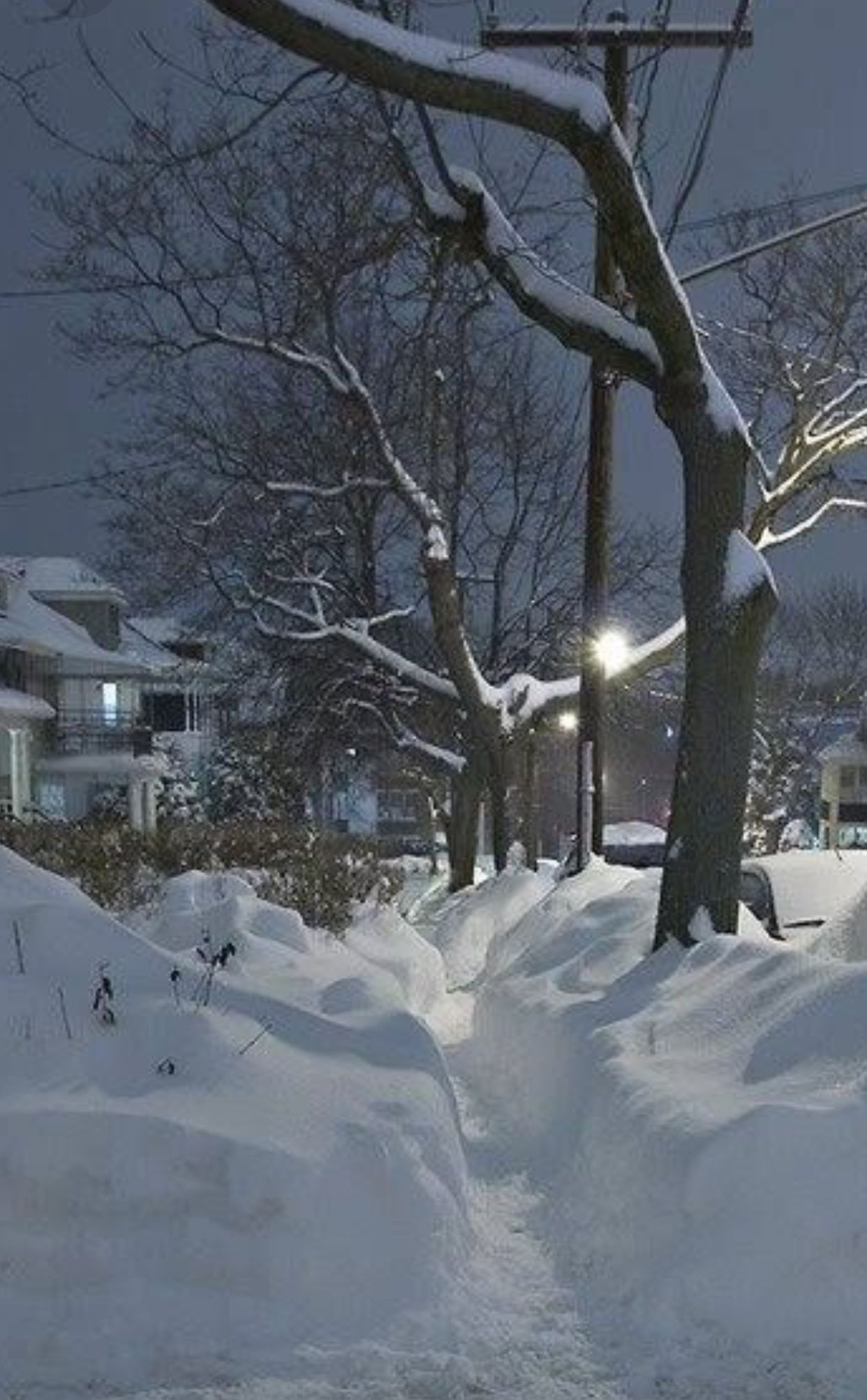 Pin By Diana Vincent On Winter Wonder Lands Winter Scenery Winter Images Winter Landscape
