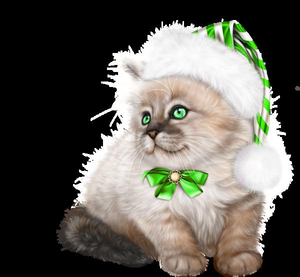 Chat Noel Image tube noel chat | cat 3d clipart 1 | pinterest | kitten cartoon