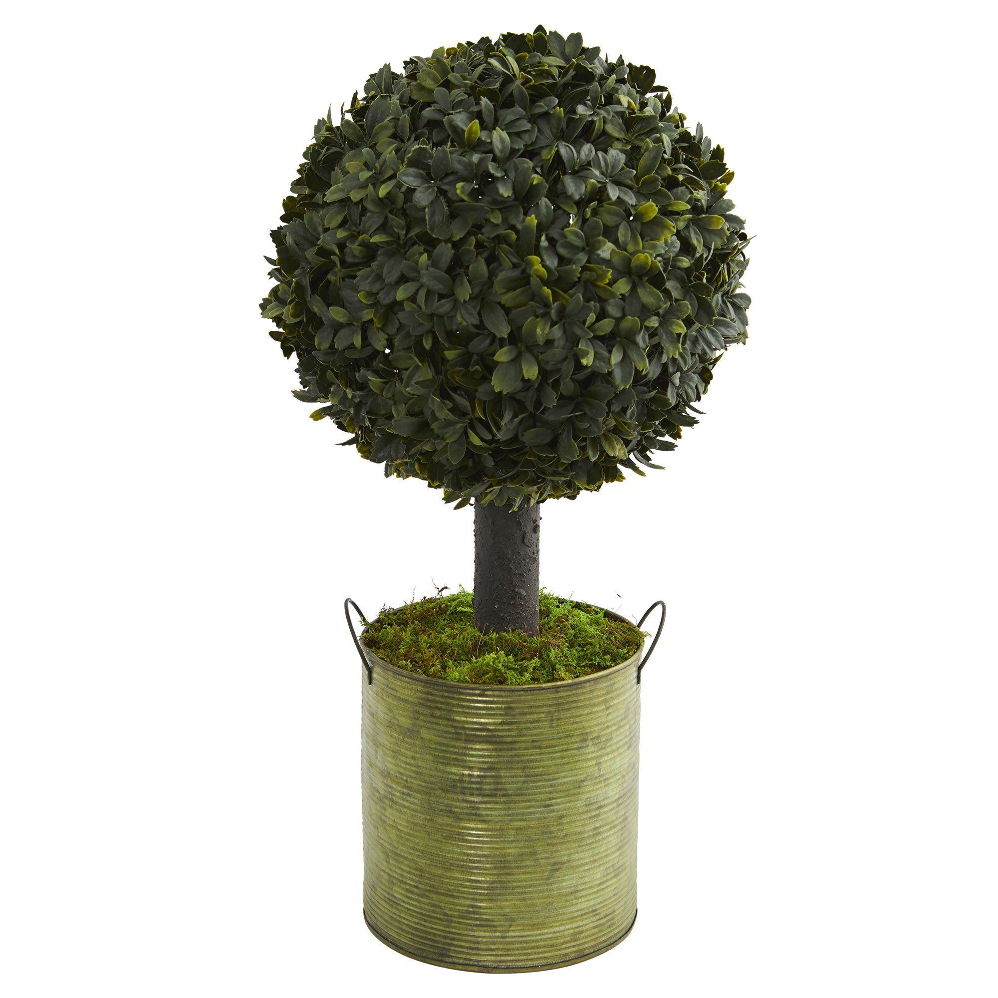 U boxwood ball topiary artificial tree in green tin indoor