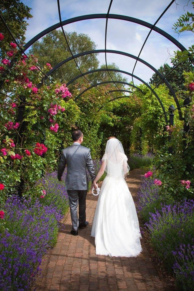 Rosenspalier Hochzeit