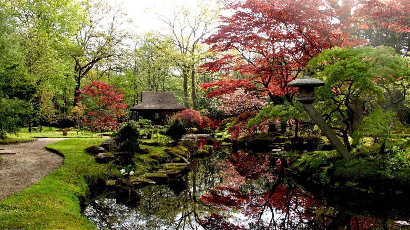 Perfection in the Japanese garden | Far East | Pinterest | Japanese ...