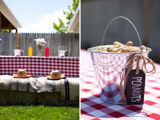 Country Themed Birthday Party