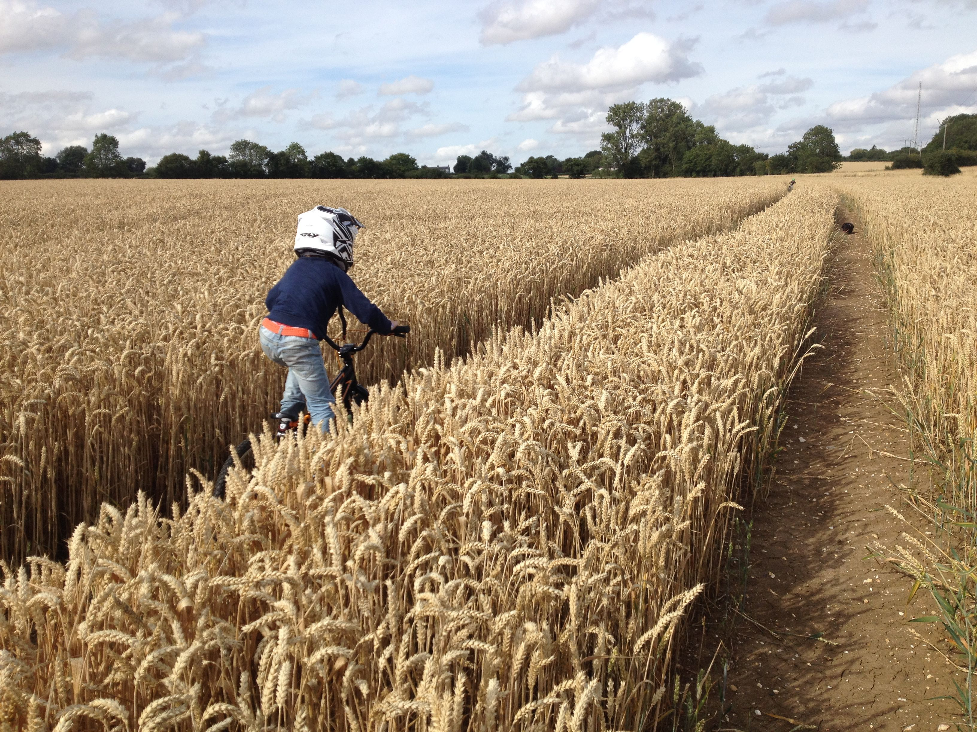 My little grom on his BMX through the fields before harvest.