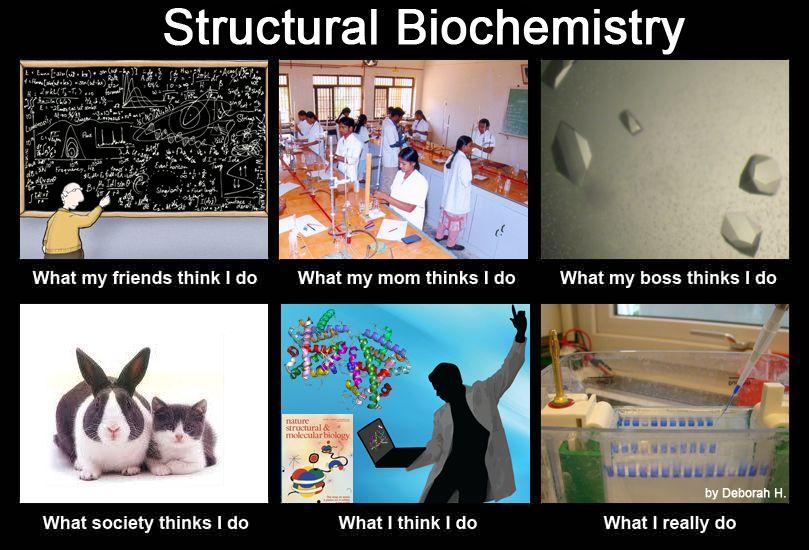 molecular Biology memes Google Search Biology memes