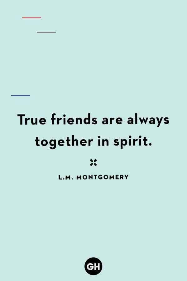 17+ Small Friendship Quotes - Friendship - Quotesjoke.com ...