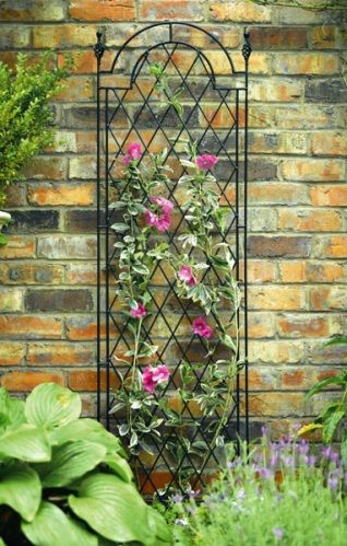 Lovely Climbing Flowers For Trellis | Metal Trellis, Trellis Designs, Decorative  Garden Trellis