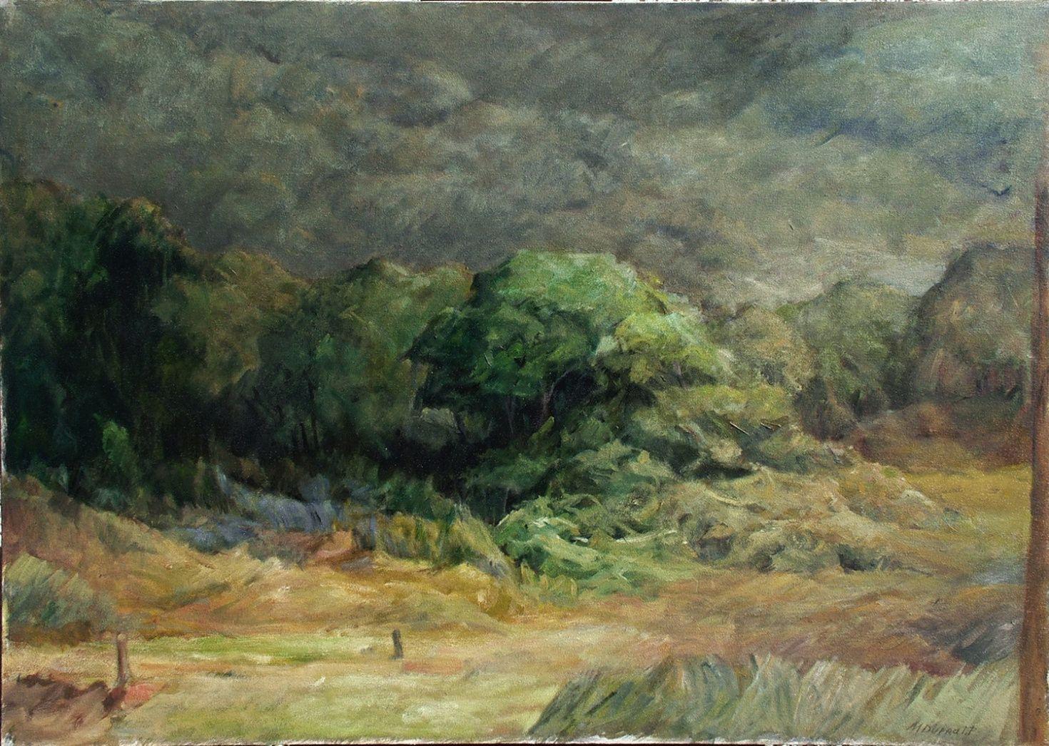 Pinturas e pesquisas de Marcelo Duprat