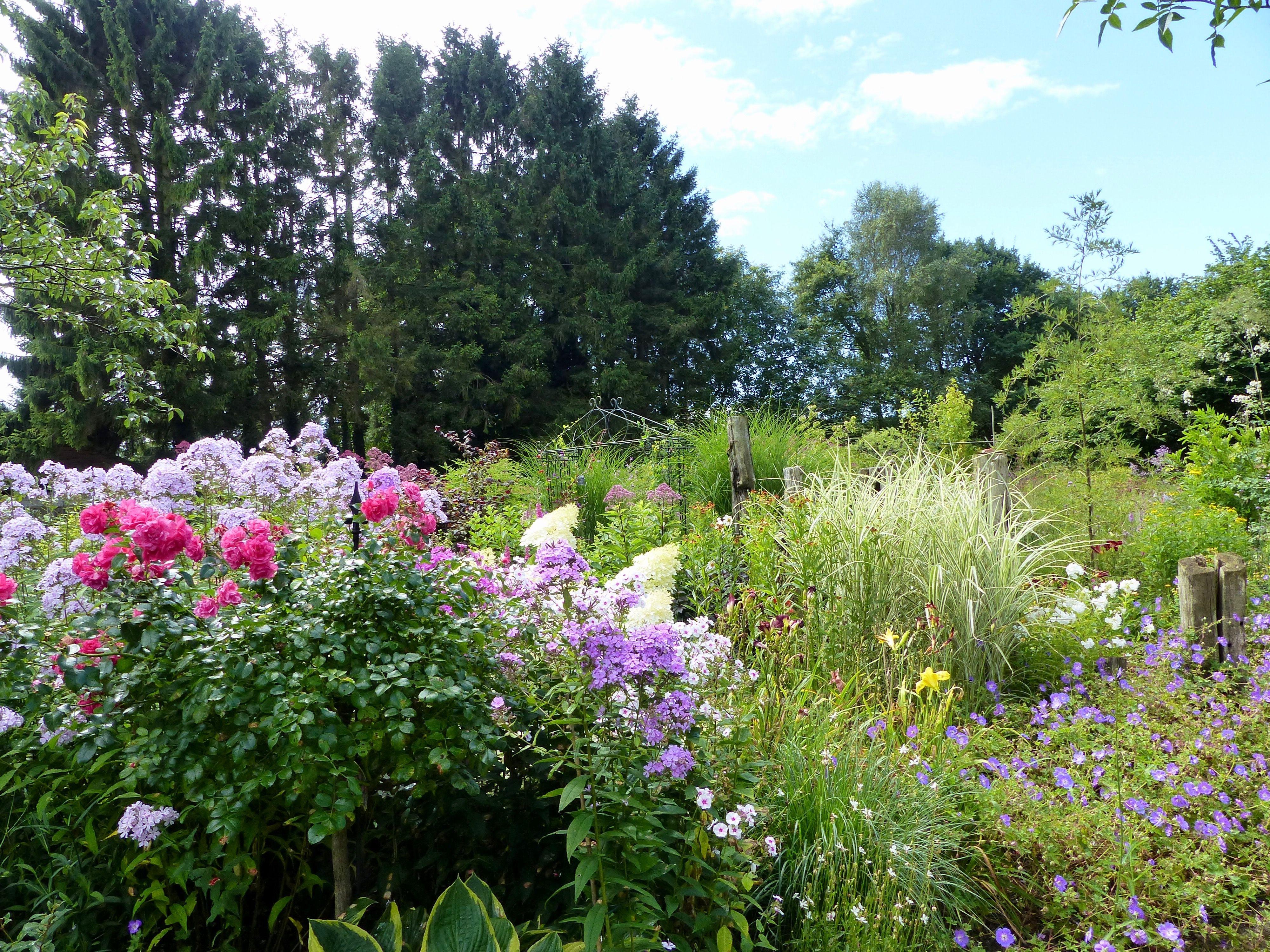 Hier Sehen Wir Einen Tollen Stauden Graser Garten Der Spannende Mix Aus Stauden Und Die Graser Die Die Ganze Gartensituation Auflockern Stauden Pflanzen Gras