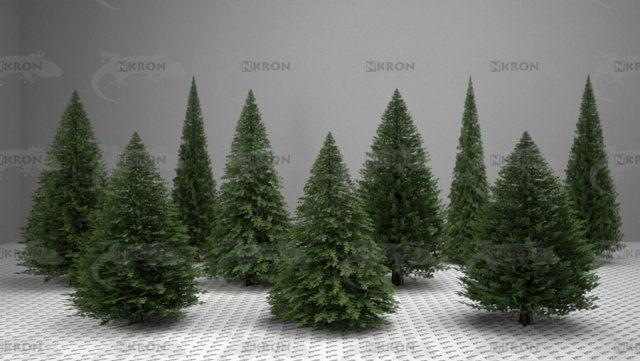 3d Christmas Tree Collection Model C4d Obj 3ds Fbx Ma Lwo 63774
