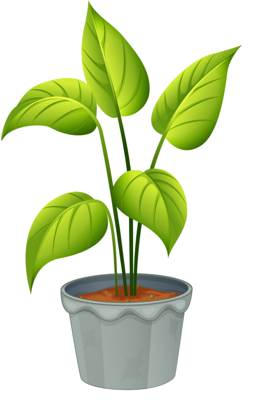 green home plant my garden valley pinterest plants rh pinterest com plants clip art images plant clipart black and white