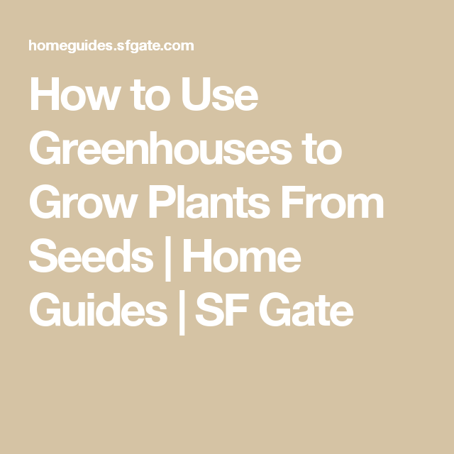 How to Use Greenhouses to Grow Plants From Seeds | Home Guides | SF Gate