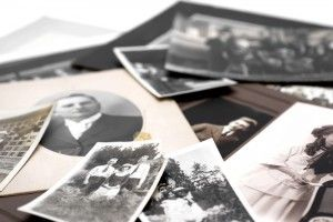 Harvesting Memories During the Holidays