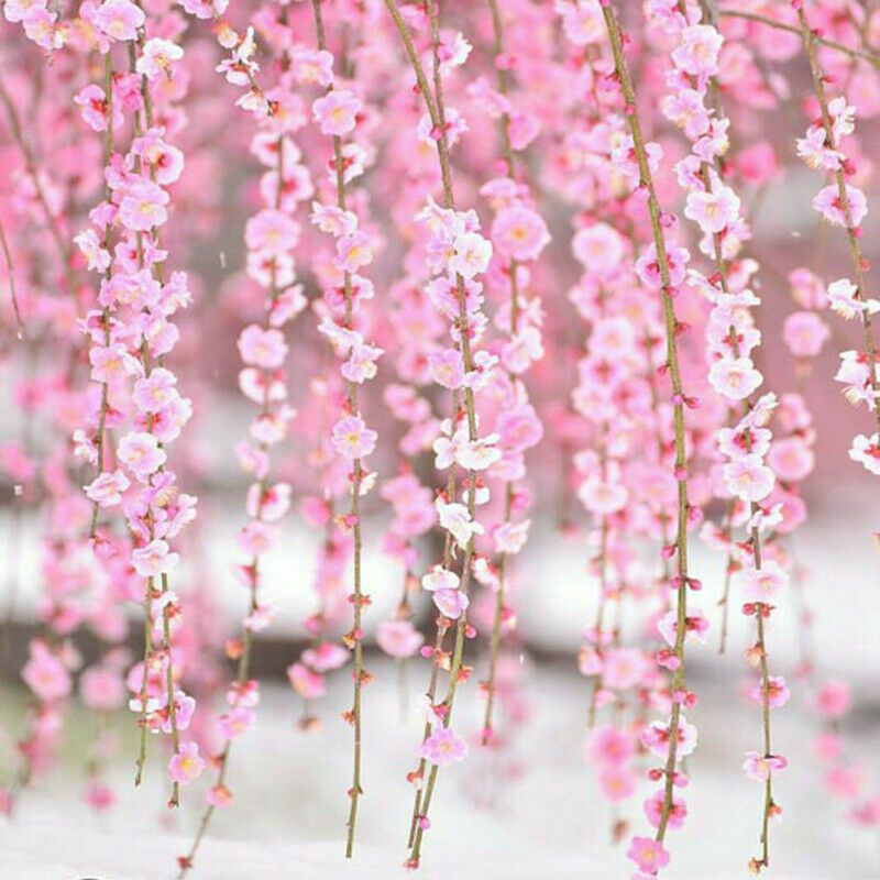 2m Artificial Flower Cherry Blossom Wedding Garland Vine Leaf Hanging Decor Home Wedding Dec Cherry Blossom Flowers Artificial Flowers Cherry Blossom Wedding