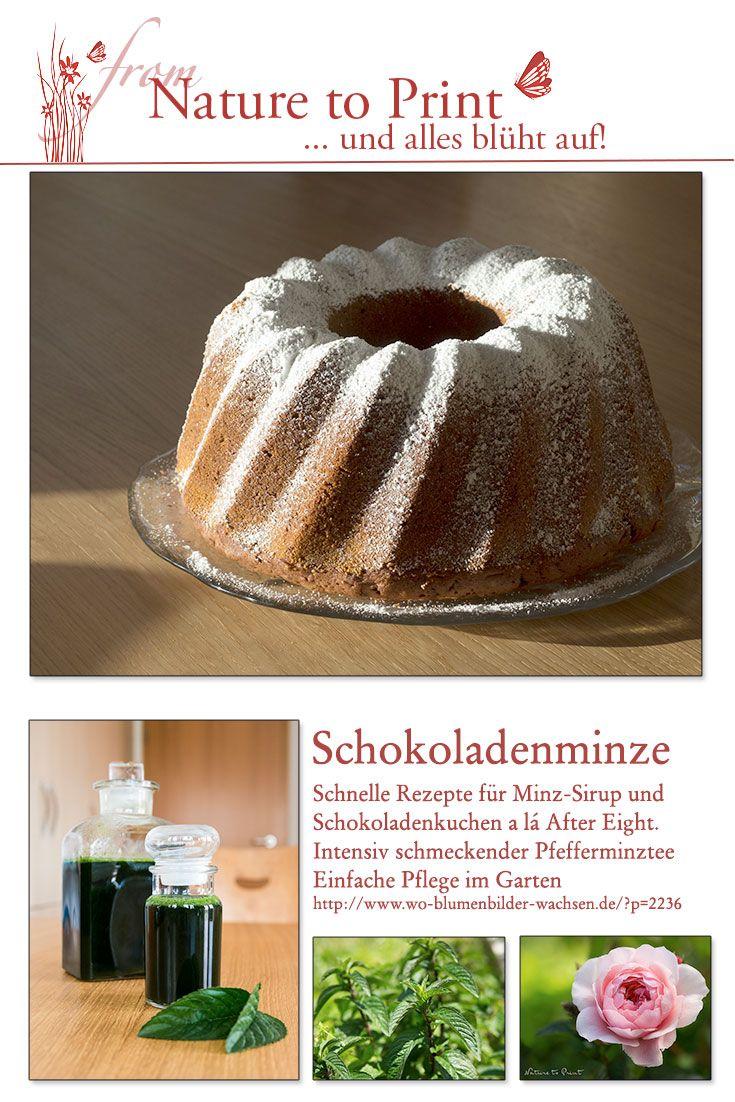 Rezepte Mit Schokominze Schokominze Kuchen Minze