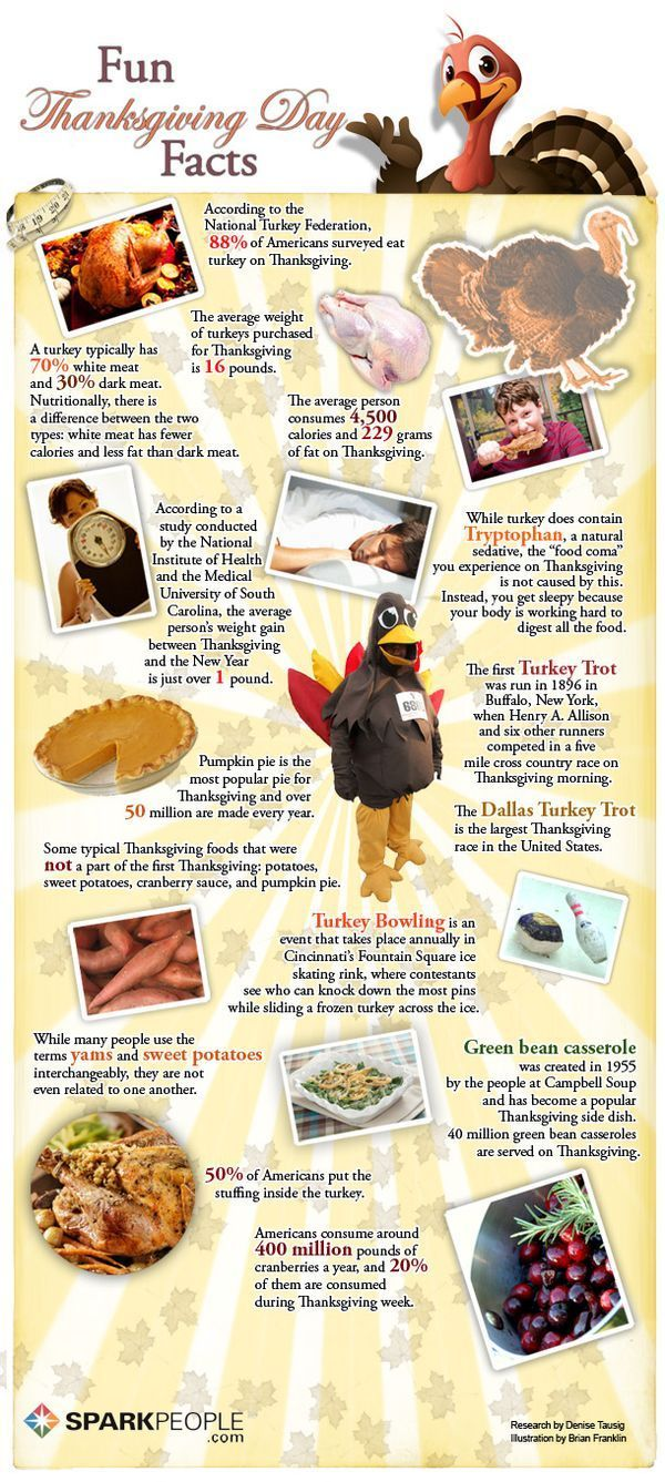 Thanksgiving Tips and Trivia PARTY GAMES Thanksgiving