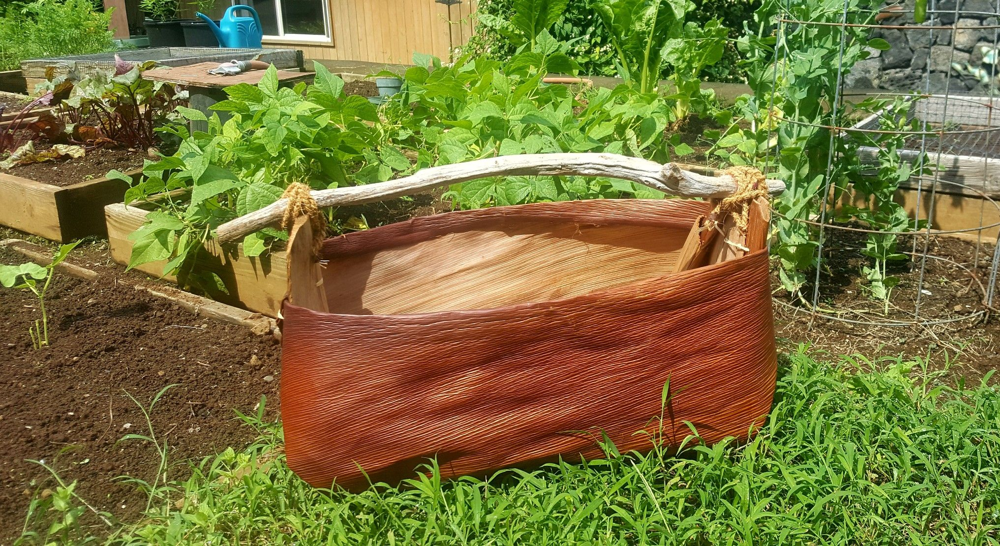 My Gardener Husband Has Asked Me For A Harvest Basket For Years