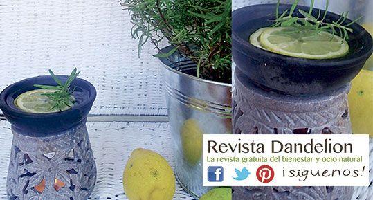 Ambientadores naturales para el hogar 1 naranja canela - Ambientador casero limon ...