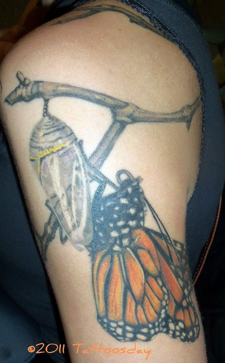 The o jays butterfly tattoos and clothes on pinterest - Tattoo 3d Monarch Butterfly Tattoo Pin By Flight Of The