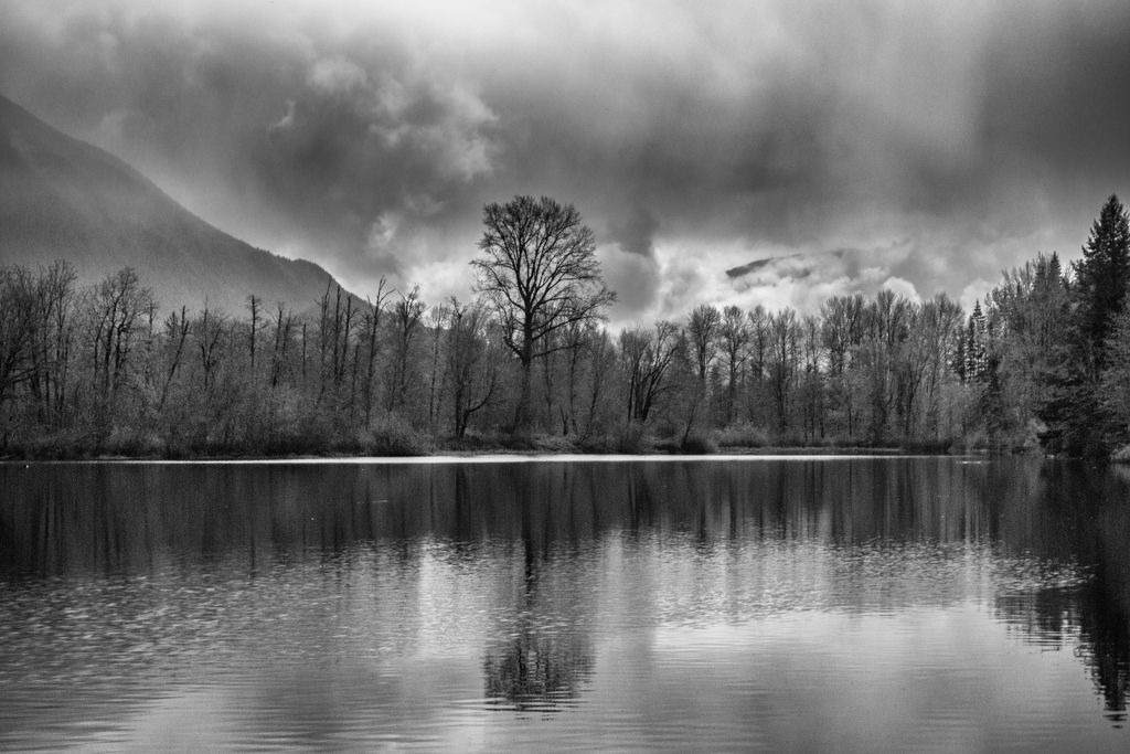 When I arrived at this awesome spot there was no mountain, just this tree. I wanted to post that shot, but I like this one a bit better and they are too similar so.... Epic fog clearing is underway and Mount Si begins to reveal itself. https://www.picturedashboard.com