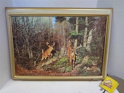 Vintage Decor Helmscene Lighted Picture Frame Wild Whitetail Bucks Deer Tag | eBay