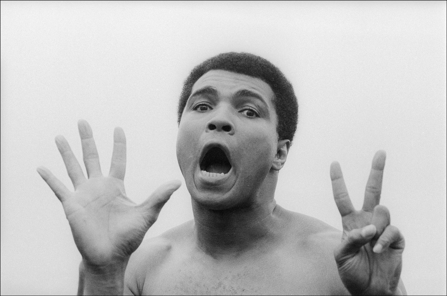 Muhammad Ali does not have a simian line.