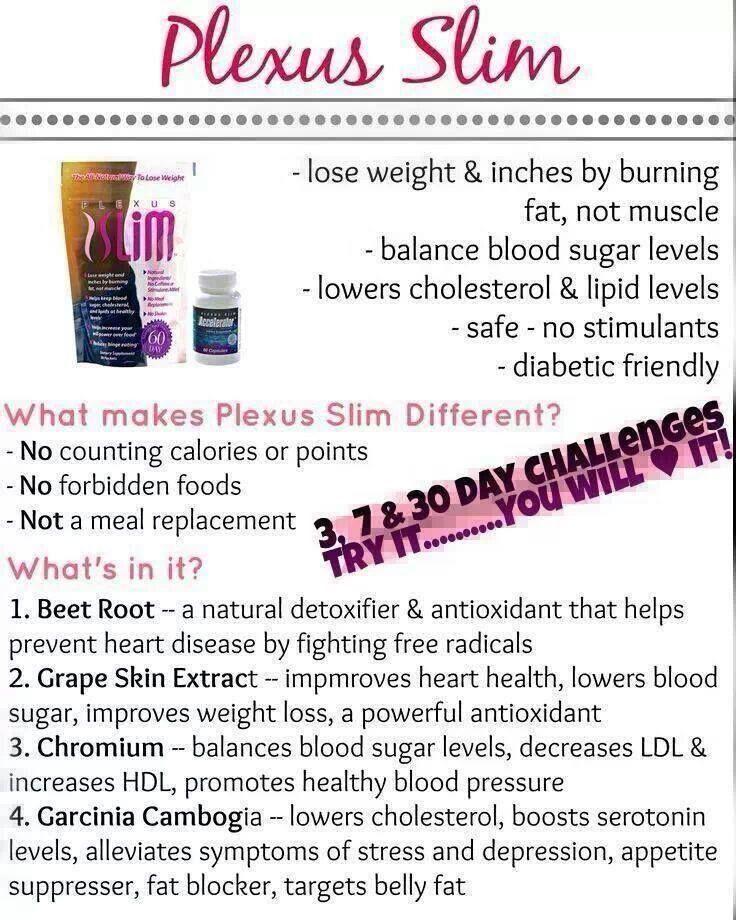 Protein diet weight loss program
