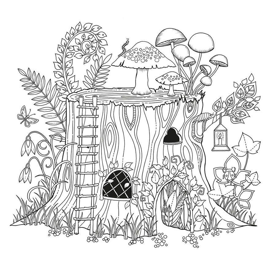 Floresta Encantada Livro Colorir Desenho 4 Jpg 897 888