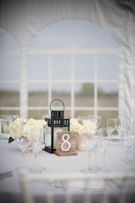 Sparkling Pointe Vineyard Wedding