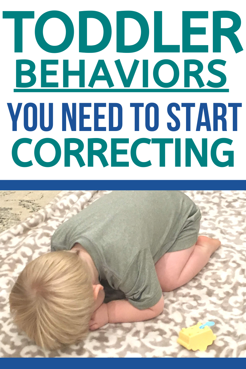 Toddler Discipline: Identifying Behaviors that Need to be Corrected