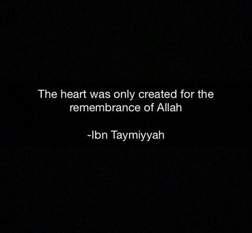 _ibn taymiyyah