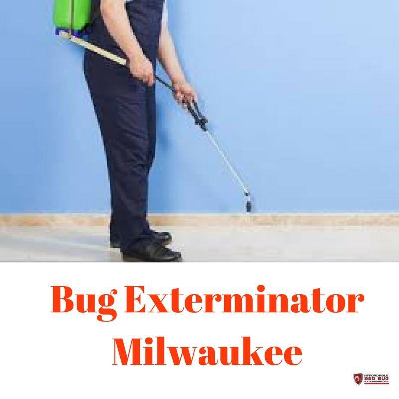 Bed Bug Exterminator Milwaukee Exterminators