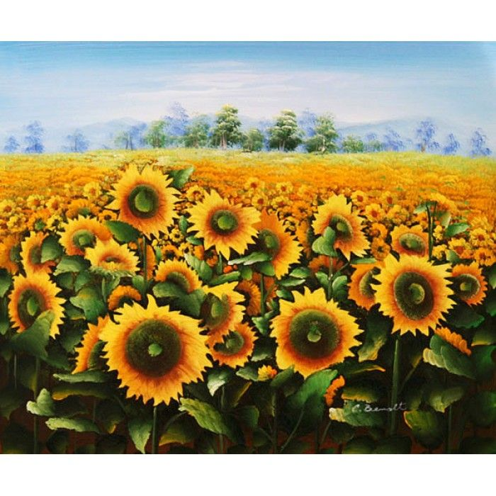 ON SALE! - Field of Sunflowers - $58.99 - Fields and Meadows - Hand Painted - Oil Paingings for Sale - Oil on Canvas - Cheap Canvas Art