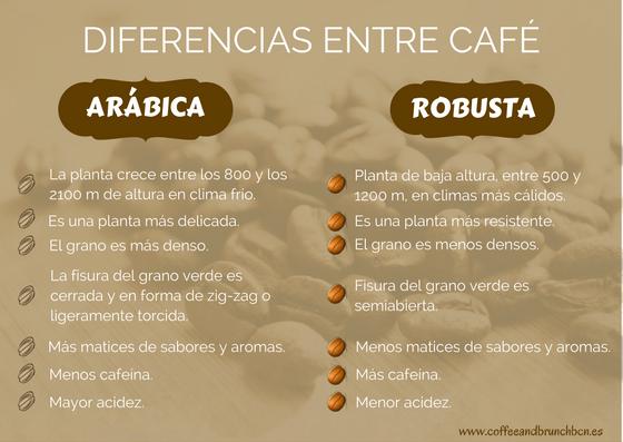 Qué Es El Café De Especialidad Y Por Qué Ya No Tomarás Café Comercial Tomar Cafe Menú De Café Infografía Café