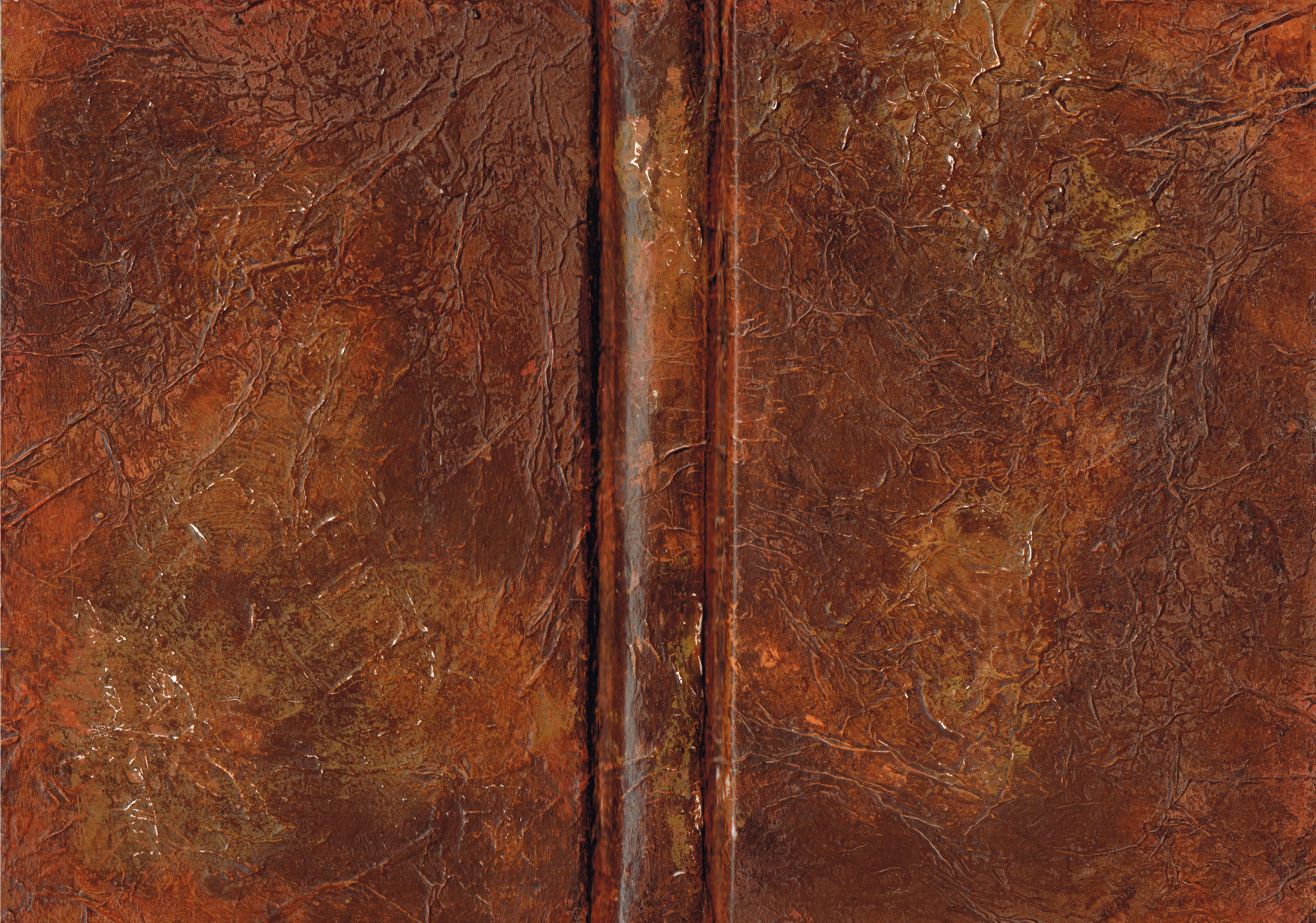 Couverture De Livre Peint Avec Un Effet De Vieux Cuir Book