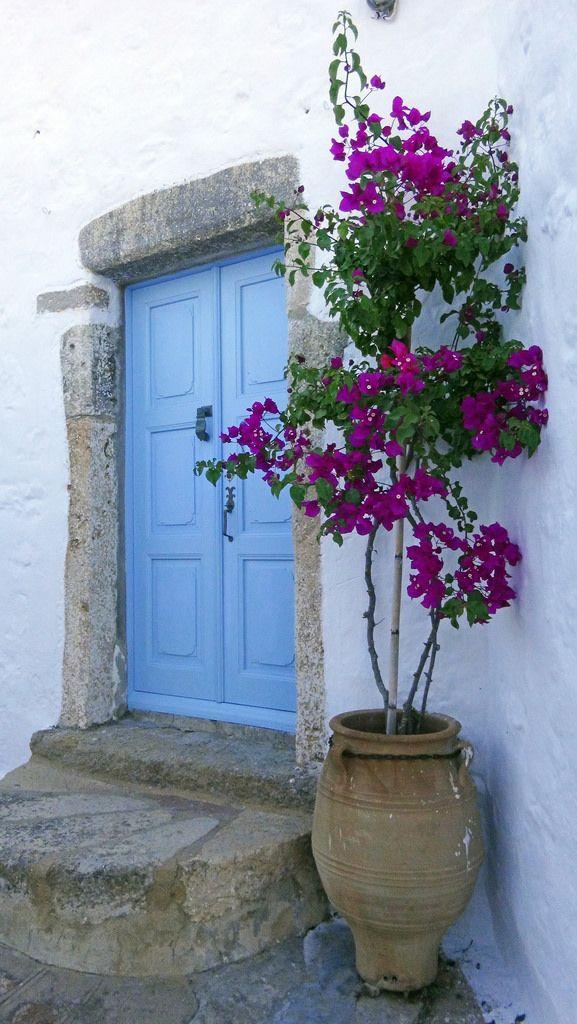 Flickr Bougainvillea Beautiful Doors Garden Design