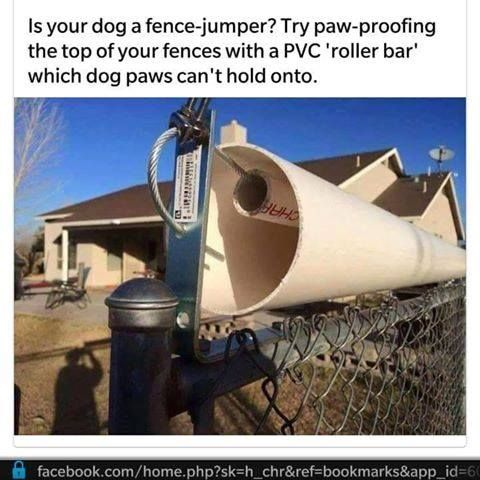 A Homemade Coyote Roller Is An Inexpensive Way To Keep Your