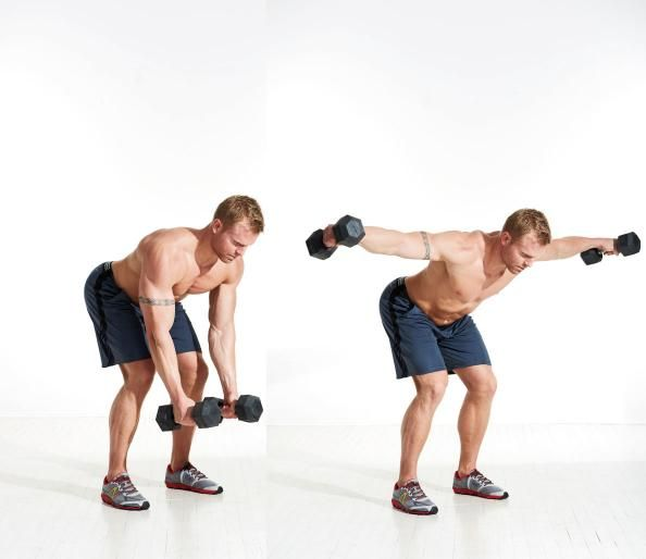 Bent-Over Reverse Fly | Workout Shoulder | Pinterest | Workout, Lateral raises and Exercises