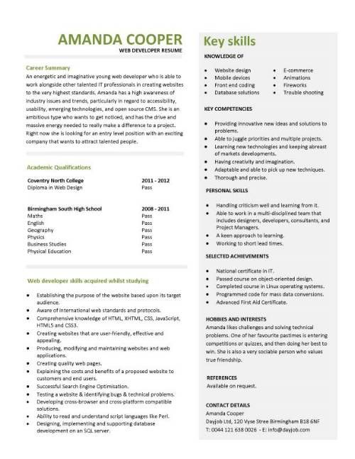 entry level web developer resume template