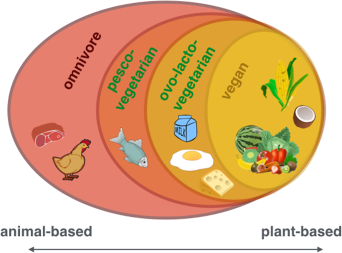 The Effects Of Plant Based Diets On The Body And The Brain A Systematic Review Translational Psychiatry In 2020 Plant Based Diet Plant Based Nutrition Resources