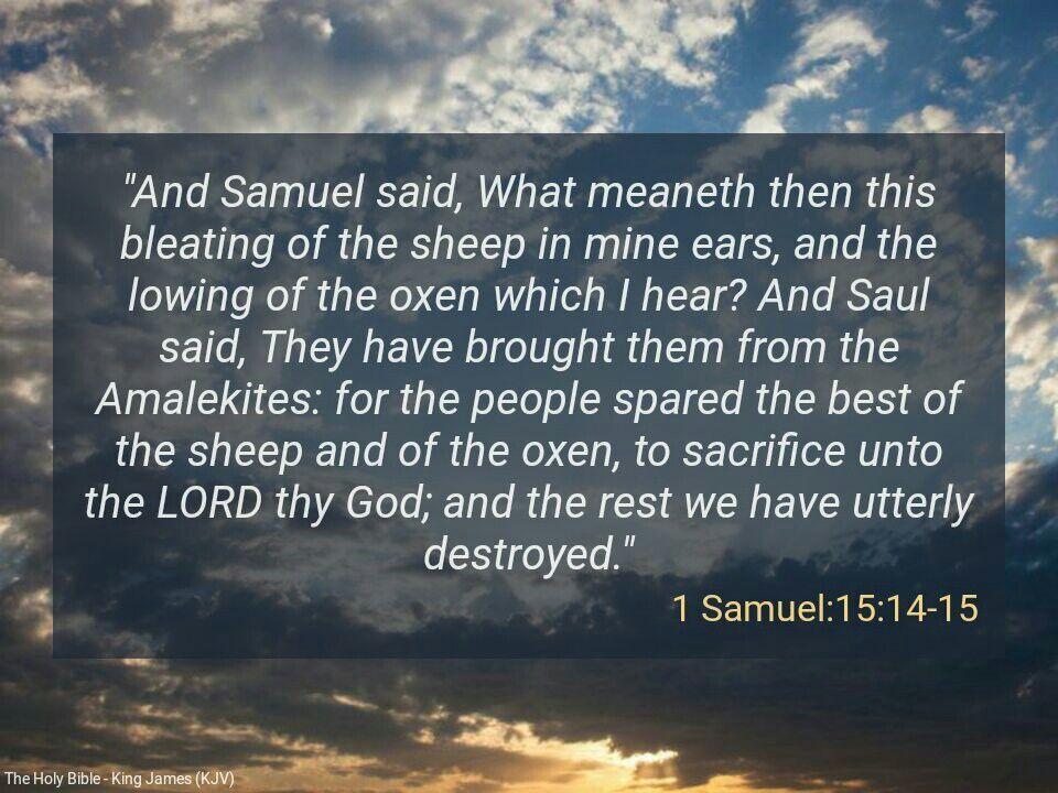 1 Samuel 15:14-15(KJV) | Daily Scripture | Daily scripture