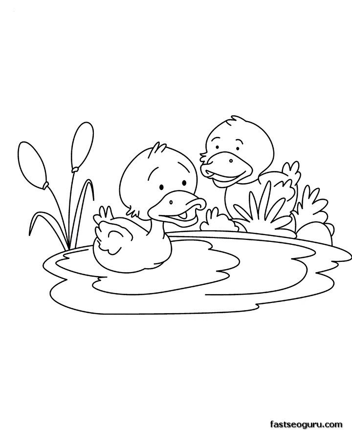 Раскраска утки в пруду