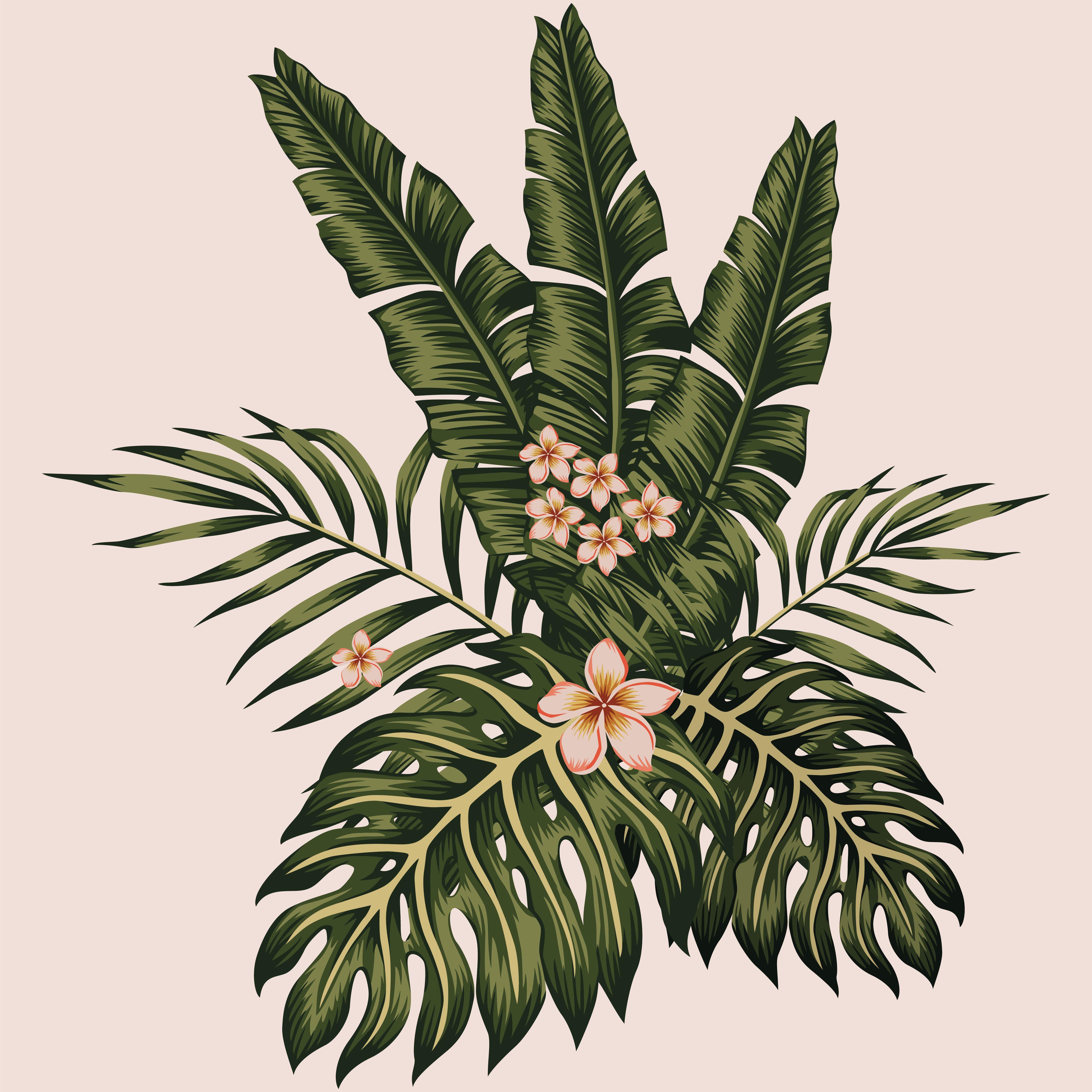 varique frunze varicoză