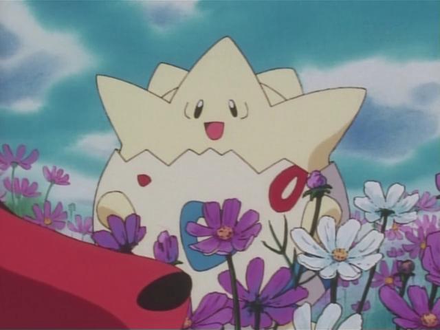 Togepi Pokemon Photo Pokemon Anime