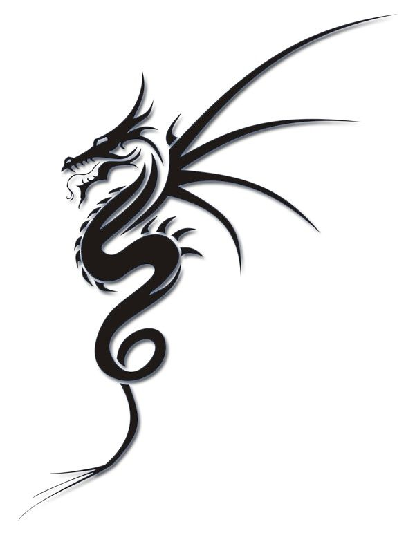 dragon tattoo tatoo pinterest drachen drache und. Black Bedroom Furniture Sets. Home Design Ideas