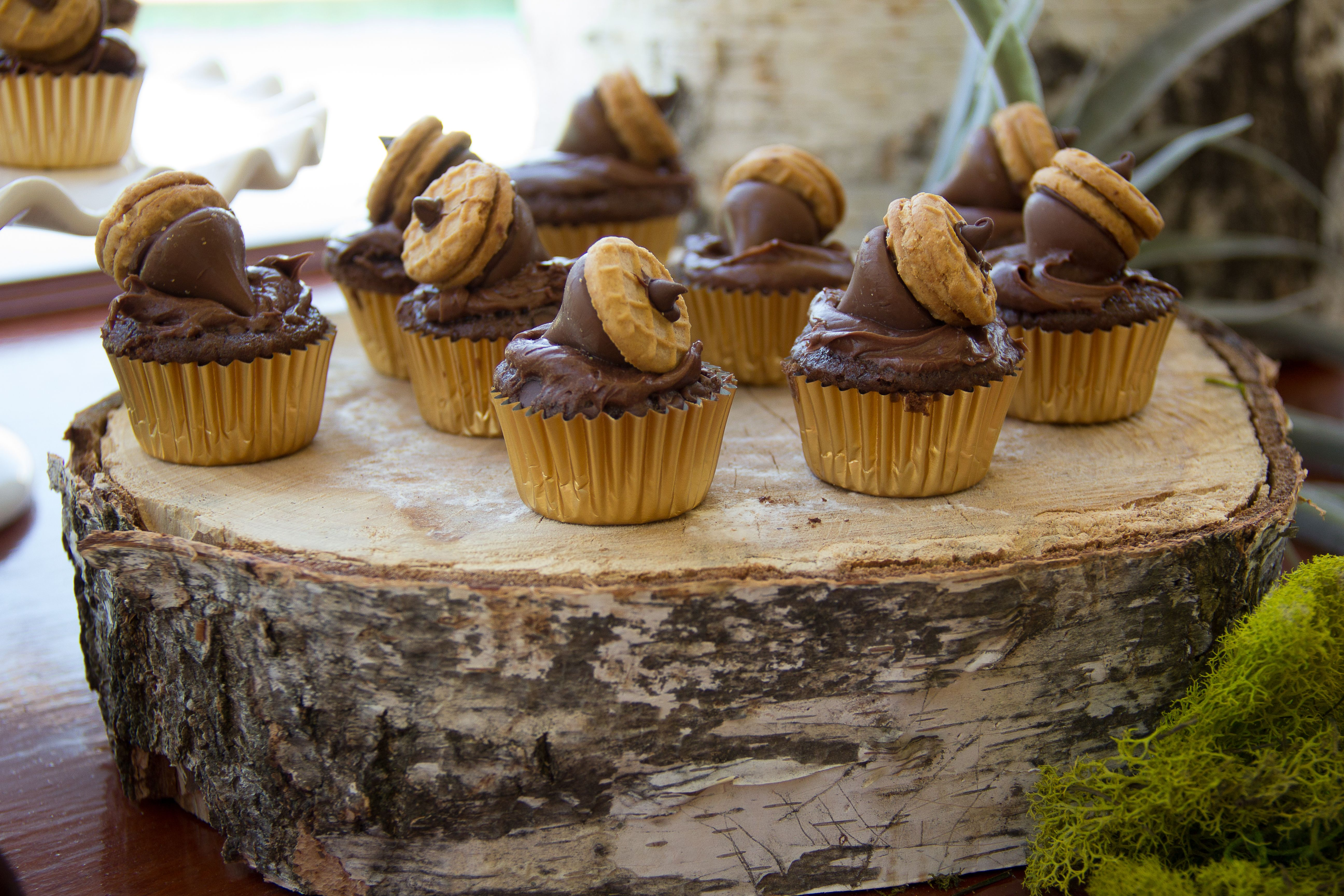 Acorn topped cupcakes at Woodland Baby Shower