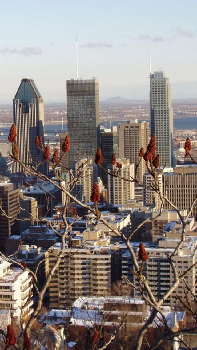 Montreal Photos National Geographic S Ultimate City Guides Olympic Stadium Montreal City Guide Amazing Buildings