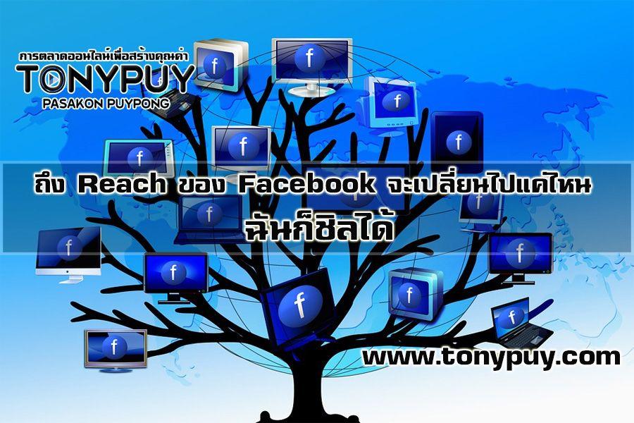 ถึง Reach ของ Facebook จะเปลี่ยนไปแค่ไหน ฉันก็ชิลได้ | Pasakon Puyppong(tonypuy)---รู้จักกับภาสกร ผุยพงษ์(tonypuy) แบ่งปัน/แลกเปลี่ยน/ปิ๊งแว๊บ/สำเร็จ