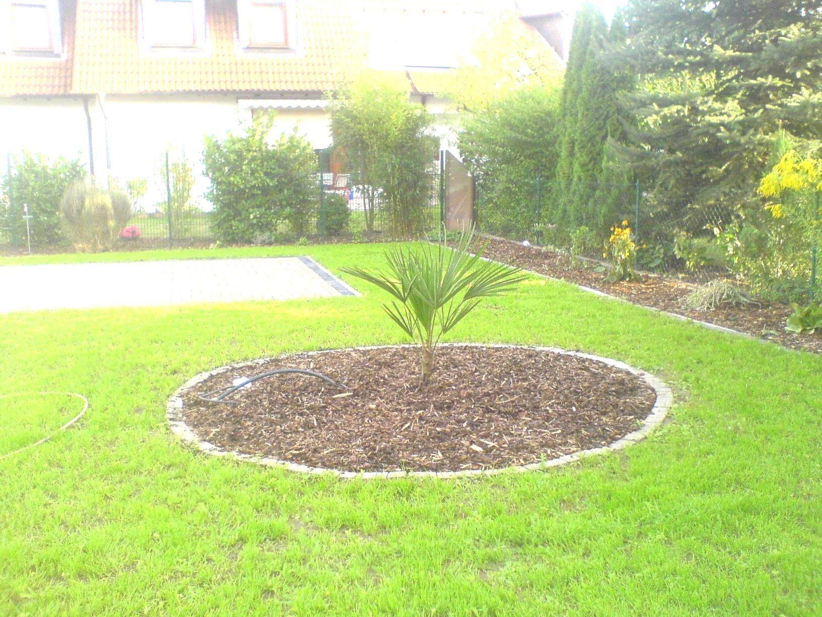 Ideen 45 Zum Feuerstelle Garten Bauen Pflegeleichter Garten Kleiner Garten Garten